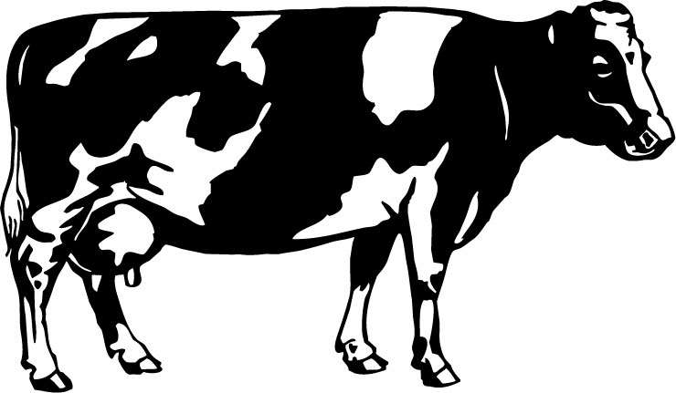 essay on domestic animal cow An essay on 'domestic animals' for kids in english language  5 lines on cow essay on cow a domestic animal paragrap - duration:.